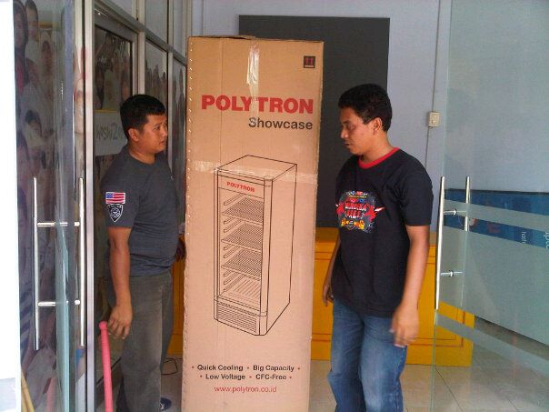 showcase plytron